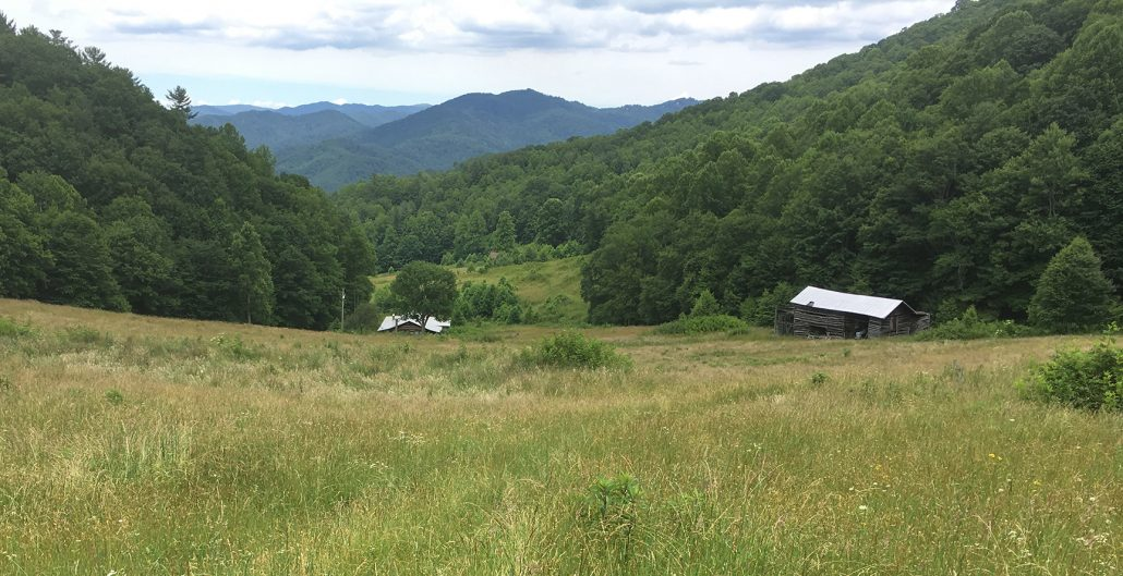 c1eb26c2bf0 Stevens Creek land protected near Great Smoky Mountains National ...