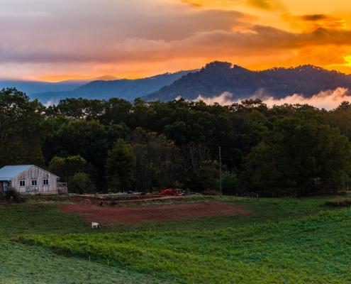 Farm scenic view by Carol Oakley