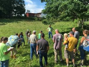 Pasture walk workshop group