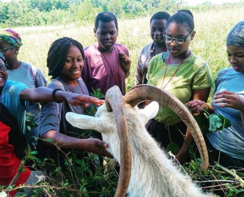 Students petting goat at SAHC Community Farm