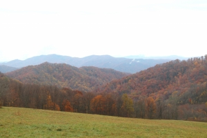 Fall view of meadow on Hump Mountain tract.