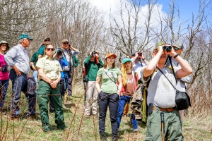 Birdwatching with Working Group members
