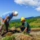 Appalachian Trail volunteer crew