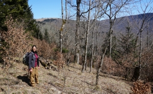 SAHC Land Protection Director Michelle Pugliese on Haw Orchard Ridge