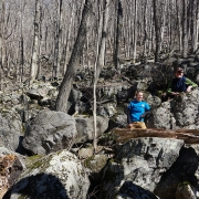 Staff in boulder fields at Gutches Creek