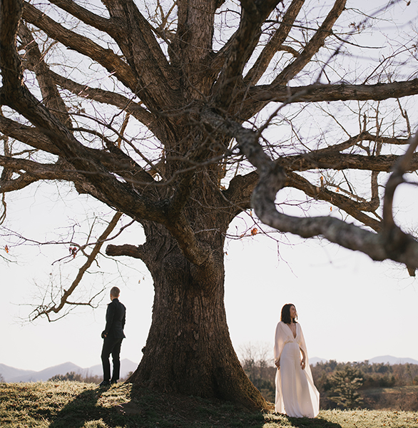 Wedding couple on either side of large tree