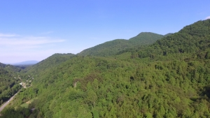 Chestnut Mountain aerial image