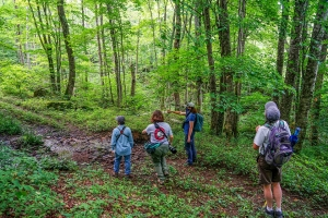 Carolina Birding Club members tour Wiles Creek