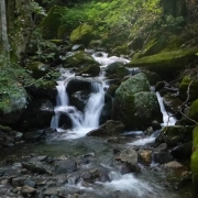 Wiles Creek