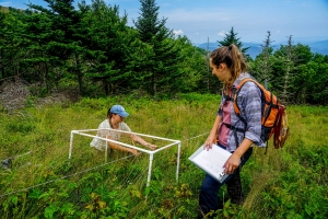 Researchers laying transects in the Roan to collect data on the ecosystem.