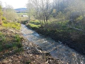 Sandy Hollar Creek flows through the property