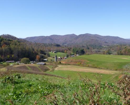Sinkhole Creek Farms