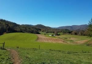 Sinkhole Creek Farm