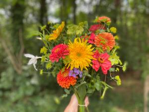 Blazing Star Flowers bouquet