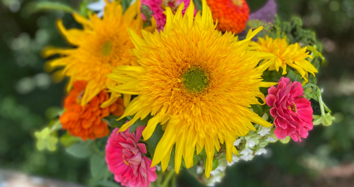 Blazing Star Flowers bouqet