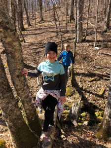 Family hiking in forested area of Roan Mountain Gateway