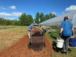 volunteers help spread compost on garden beds