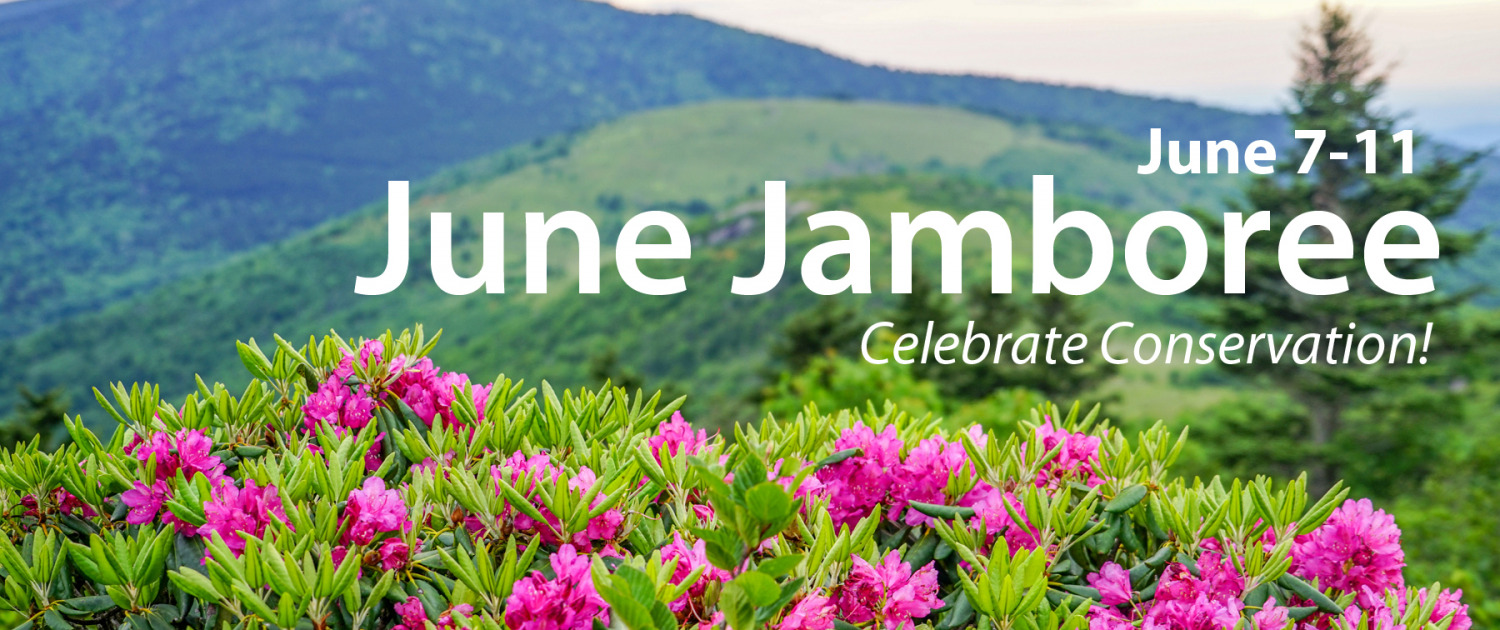 photo of Catawba rhododendron with mountains in the background, June Jamboree June 7-11 text overlay