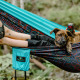 Person and dog in ENO/WIcked Weed Brewing/SAHC Appalachia hammock