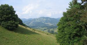 scenic pasture view