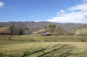 Protected farmland in Sandy Mush community of Buncombe County