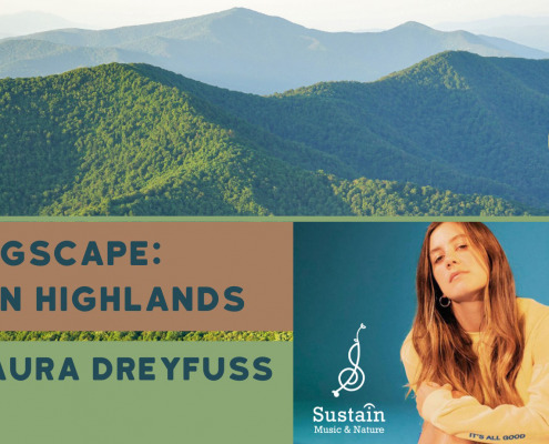 Laura Dreyfuss songscapes promo box with mountain view
